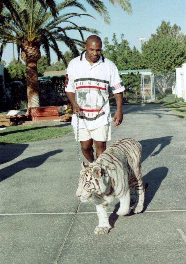 Mike Tyson legend boxing
