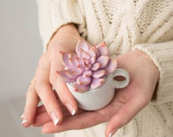 Pink Succulent Fairy Garden in Cup Ideas Polymer Clay Succulent Home House Decor Decoration Modern Minimalist Home Style Housewarming by eteniren. Explore more products on http://eteniren.etsy.com