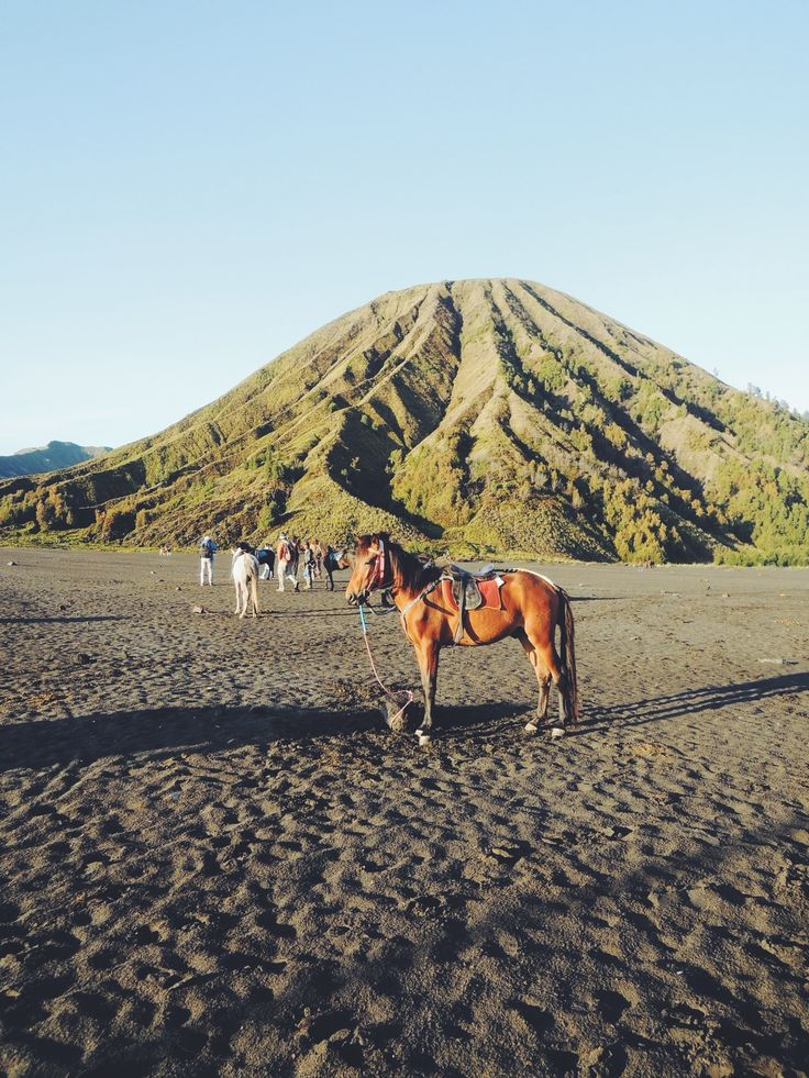 Bromo Tengger Semeru National Park, well known for its sunrise and the Tengger tribe. Look for the folk story of Tengger, it's indeed interesting.