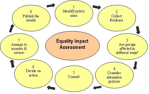 equality impact assessment methodology