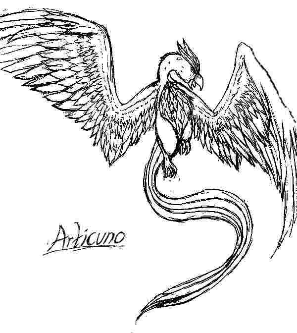 Articuno Pokemon Coloring Pages Articunopokemon