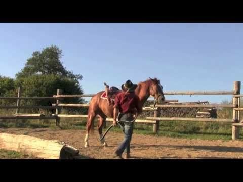 Mounted Archery / Horse Training - YouTube