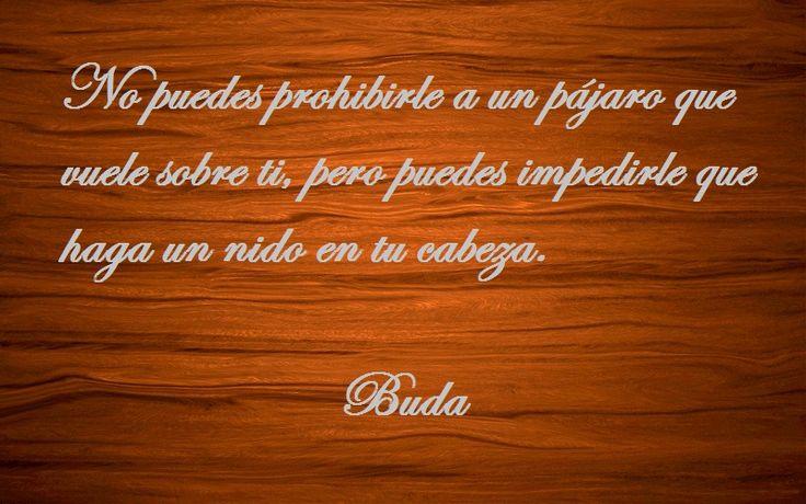 10 ENSEÑANZAS DE BUDA.