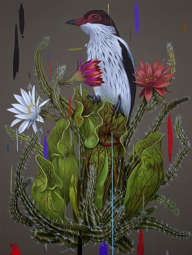 'Savage Beauty' by @frankigonz. Find out more about Frank and see more of his wonderful art in his interview at wowxwow.com. (abstraction, birds, botany, cactus, cacti, desert, flowers, graphic, nature, ornithology, painting, plants, realism, succulents, wildlife, contemporary art, fine art, new contemporary art)