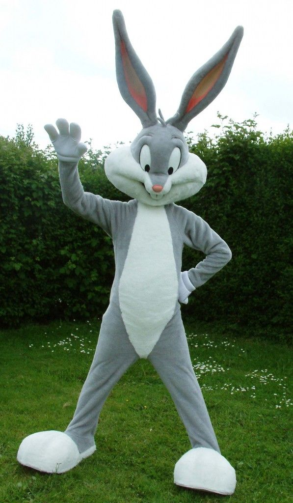 Halloween Costumes Bunny