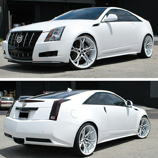 1000+ Images About Caddy On Pinterest