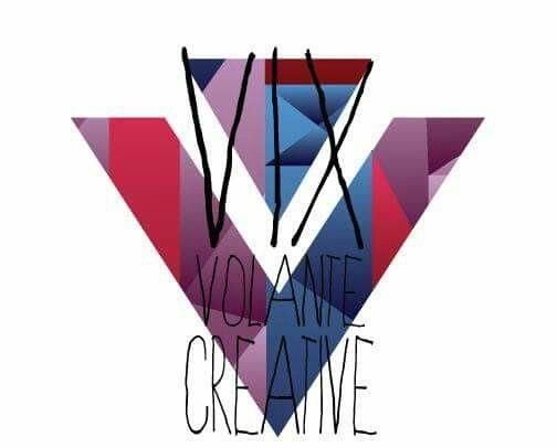 Logo alternative (never used)  .©vixvolantecreative 2016