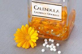 Благодаря полезным свойствам календулы, ее с успехом применяют в