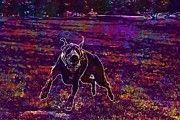 "New artwork for sale! - "" Dog Doberman Pet Canine Brown  by PixBreak Art "" - http://ift.tt/2v8JRQO"