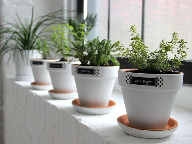 Modern white minimalist easy windowsill herb garden Kitchen windowsill herb pots