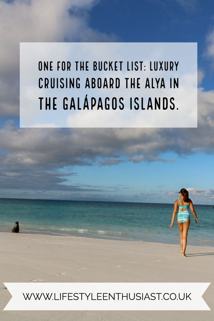 Galapagos islands, Ecuador by luxury cruise aboard the Alya Catamaran - one of the most exclusive cruises in the world. Seeing sea lions, wild albatross, turtles, blue footed boobies and much more. Read the review on The Lifestyle Enthusiast Blog.