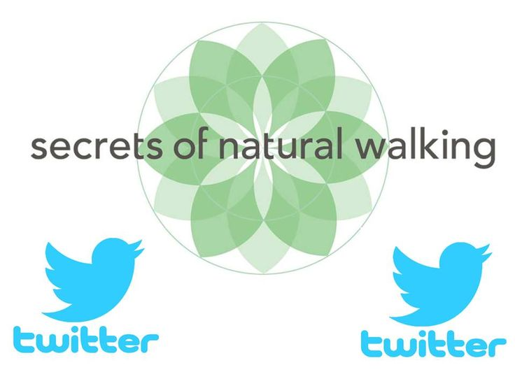 Twitter HQ in San Francisco will be having its 1st Secrets of Natural Walking workshop for the Twitter employees. For non-employees, you may still join if space allows.  Registration Info: Here's the registration contact info: West Coast Secrets of Natural Walking™ Workshop Location: San Francisco @ Twitter Headquarters Date: Weds 10/1 & Thurs 10/2 @ 2pm-6pm Registration Contact: To reserve your spot please email Mina- minaspark@gmail.com For more SONW info: Natural-Walking.com