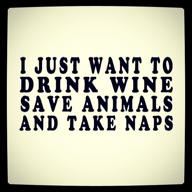 wine, animals and naps- literally best description of myself I have ever come across.