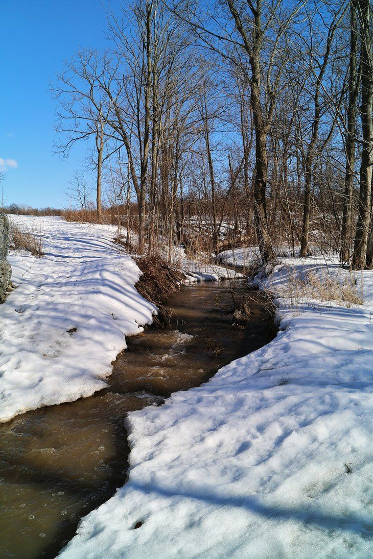 Spring Thaw by RuralCrossroads360