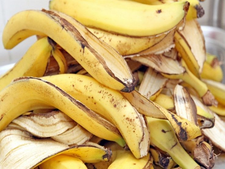 La peau de banane au jardin (1)