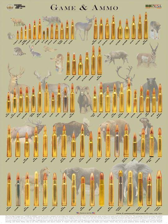 Cartridge Comparison Guide's Photos - Cartridge Comparison Guide
