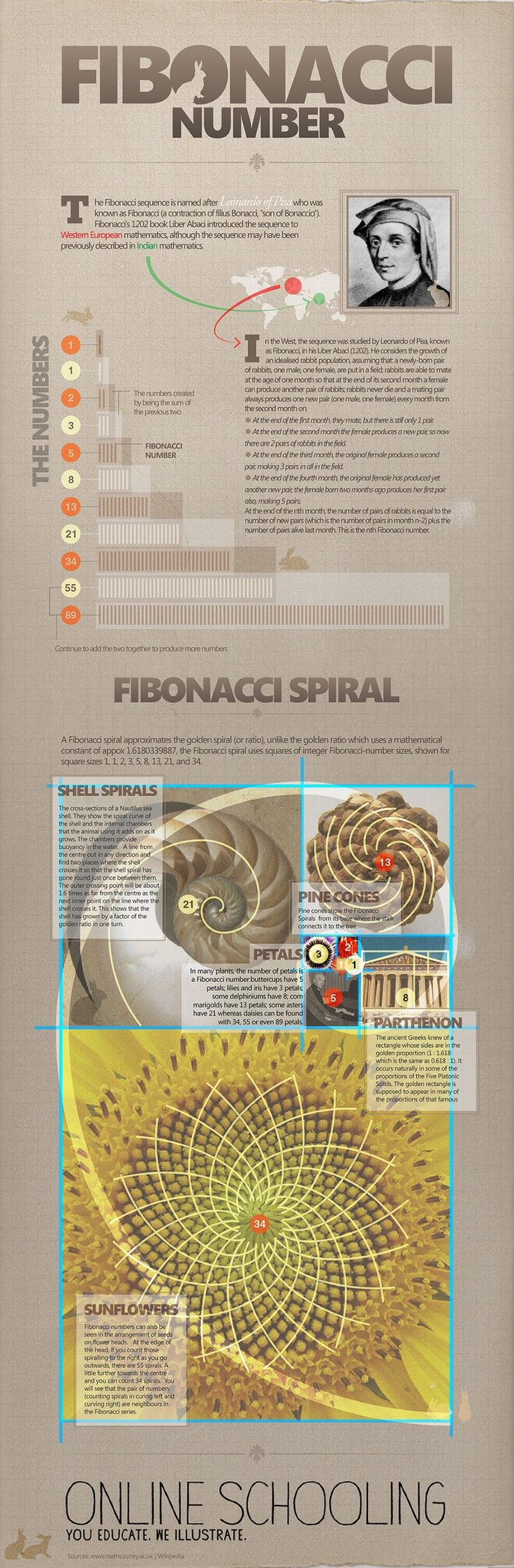 Fibonacci Spiral in nature and architecture