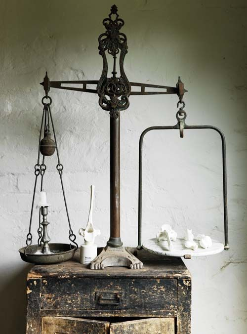Vintage Industrial...Bowerbird by Sibella Court (The Society inc.) Photography Chris Court