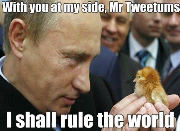 Putin - www.meme-lol.com