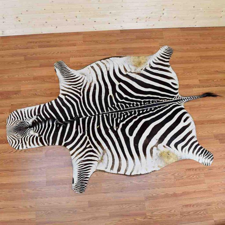 Best 25+ Zebra Skin Rug Ideas On Pinterest
