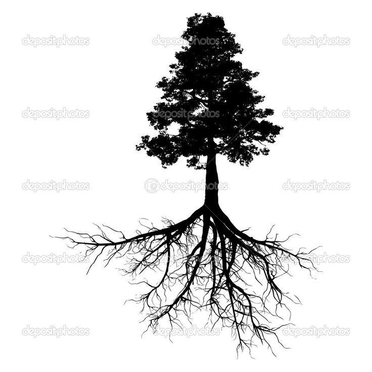 tree roots - Pesquisa do Google