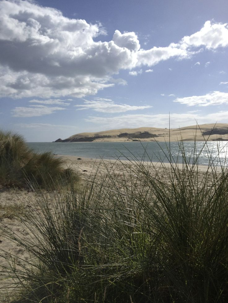 Looking out from Omapere, Hokianga, Northland, New Zealand