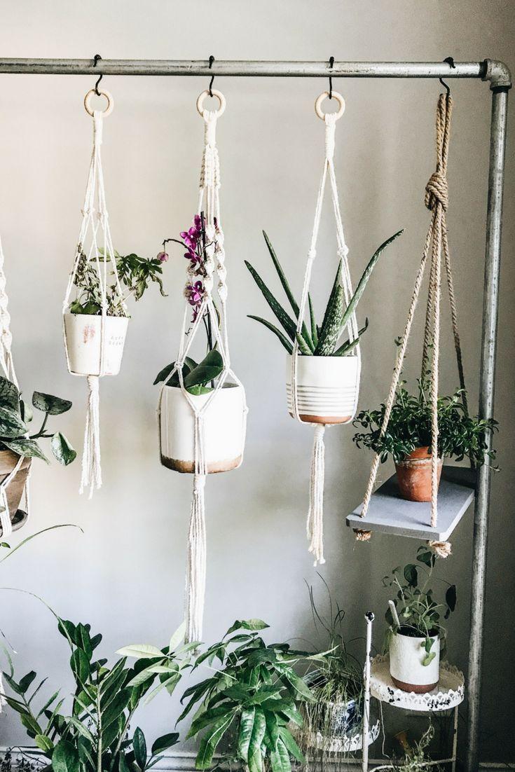 Home Design And Decor Ideas And Inspiration Plant Decor Hanging