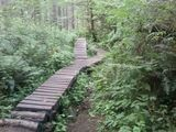 Puyallup Trails - Best Puyallup camping, hiking & biking trails | AllTrails.com
