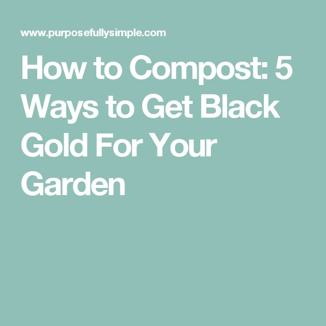 How to Compost: 5 Ways to Get Black Gold For Your Garden