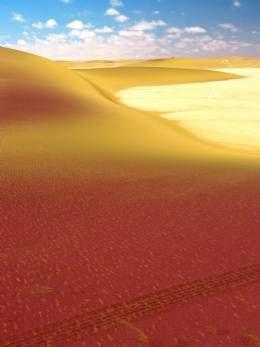 Pink #Dunes Namibia Accommodation & Lodges