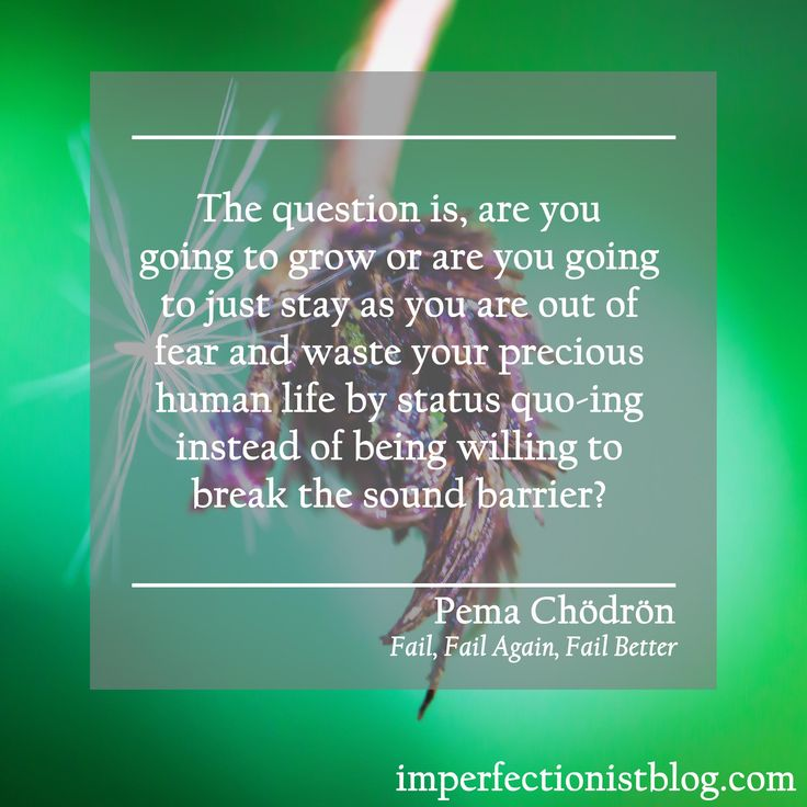 "A quote from Fail, Fail Again, Fail Better, our Imperfectionist book this week: ""The question is, are you going to grow or are you going to just stay as you are out of fear and waste your precious human life by status quo-ing instead of being willing to break the sound barrier?"" -Pema Chödrön"