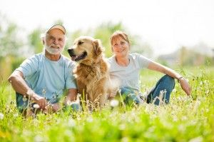 Pet trusts - providing for your pet in case you pass away.  Great information!
