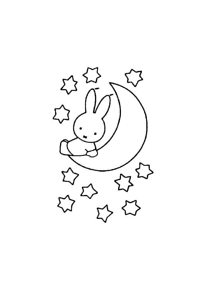 nijntje op de maan