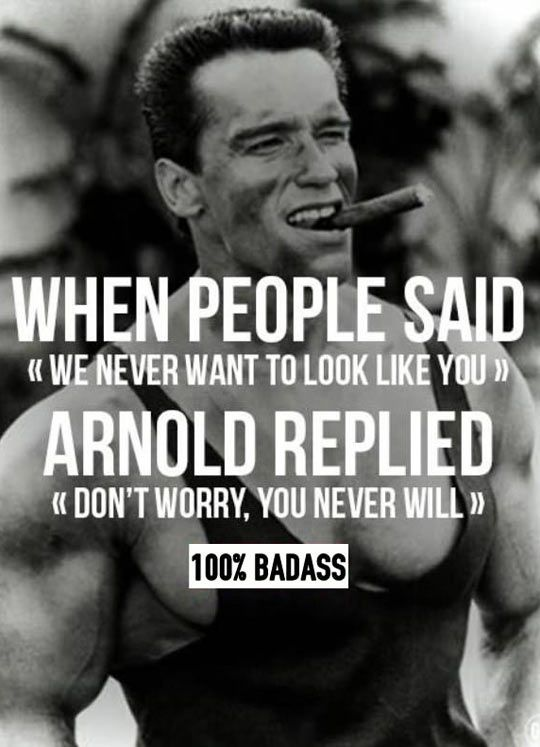 23 best All Things Arnold images on Pinterest Fitness motivation - fresh arnold blueprint day 19