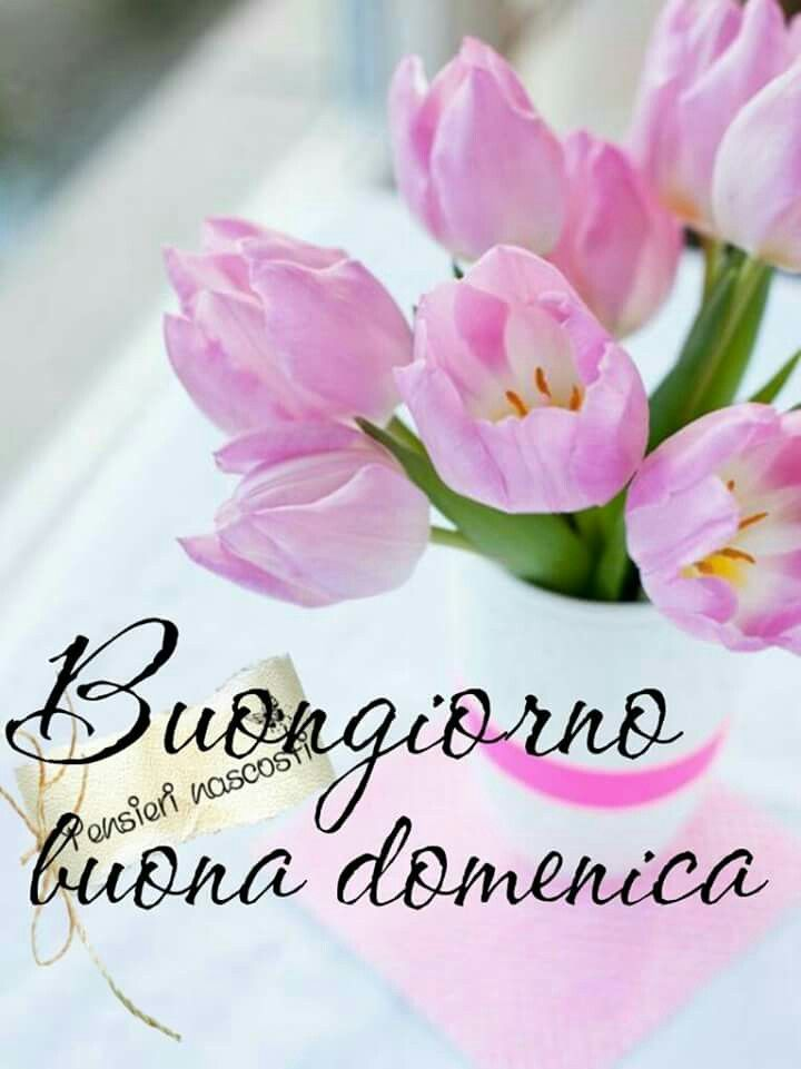 3196 best images about buongiorno buona giornata buona for Top immagini buongiorno