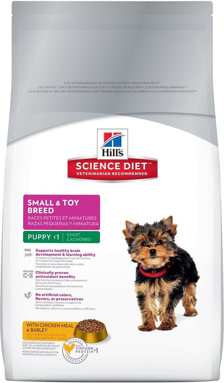 Hill's Science Diet Puppy Small & Toy Breed Dry Dog Food provides your pup with precise nutrition for a healthy lifestyle. Made with wholesome ingredients such as savory chicken meal and barley, this nourishing recipe is balanced to meet your pet's needs and support healthy brain and eye development. Manufactured in the United States, every ingredient meets strict requirements for purity and nutrient content which exceed industry standards. Formulated for small and toy breed puppies, ...