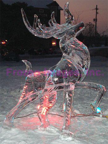 Ice Sculpture: Conveys such a proud stance.