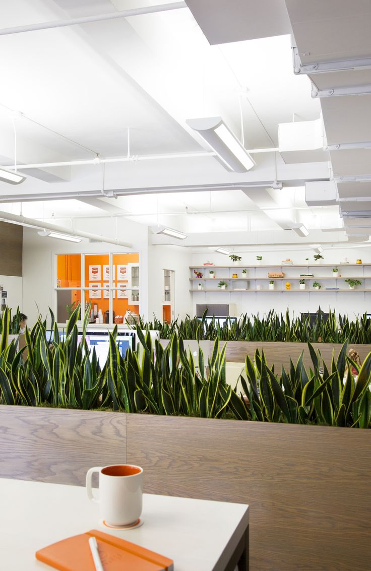 A look inside day one agency s modern nyc office for Jardines pequenos para oficina