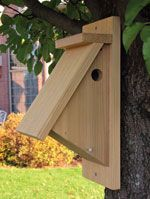 Building A Chickadee House: From http://www.pinterest.com/source/popularwoodworking.com/