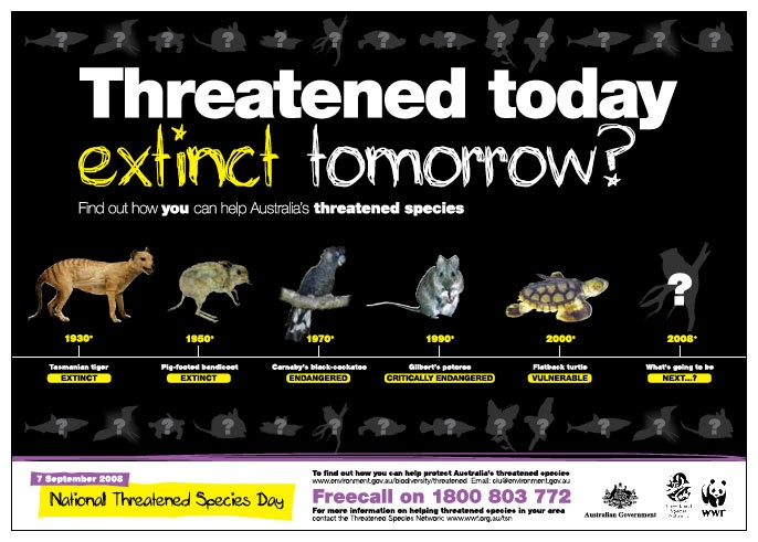 National Threatened Species Day Design and Branding