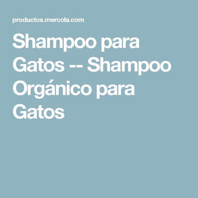 Shampoo para Gatos -- Shampoo Orgánico para Gatos