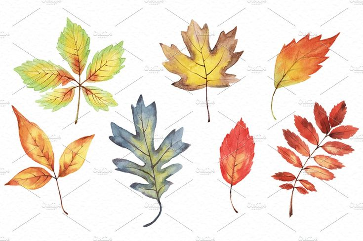 Autumn breath by Ponomarchuk Art on @creativemarket