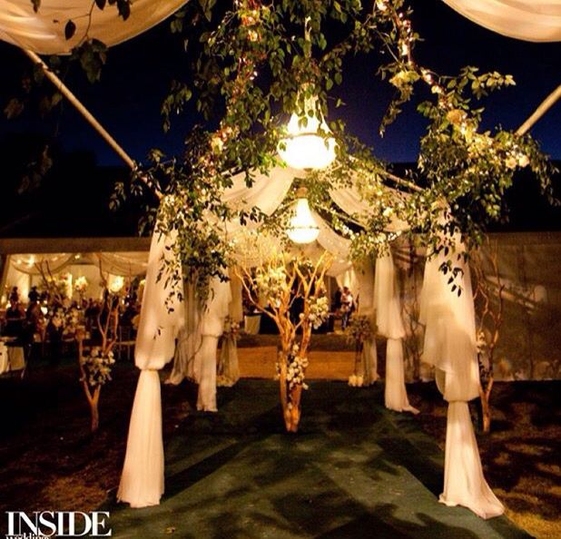 Wedding Grand Entrance Song: 135 Best Images About Entrances To Tent Wedding On