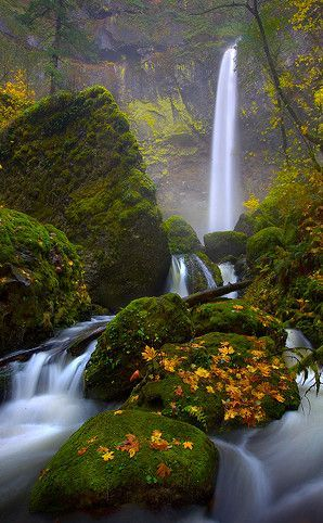 Elowah Falls   Travel  