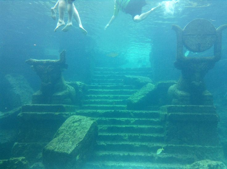 #Atlantis #Hotel #sea #UnderTheWater