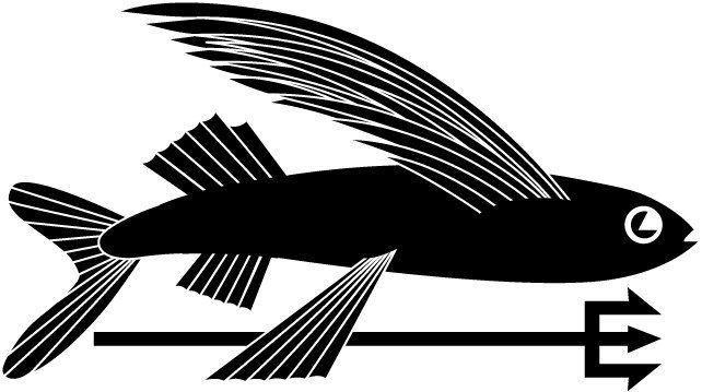 Geoff McFetridge identity development for the  Patagonia label.