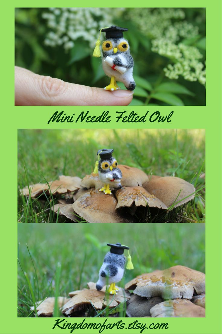 This amazing tiny needle felted owl is made of 100% high quality merino wool. Despite the micro size, the work made with high quality detailing. It will be perfect gift for any GRADUATOR or TEACHERS! The owl also will be amazing for DOLLHOUSE display, mini animal collection. ~  felted owl owl crafts mini owl minimal owl micro owl felted owl diy felted birds miniature owl  miniature art miniature birds  owl for teacher owl for graduation graduation gifts teacher gifts dollhouse miniatures