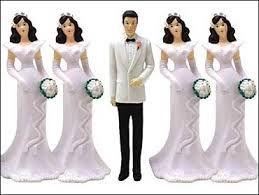 Relation: Heterosexuel polygame Definition: une relation hétérosexuel polygame est quand un homme ou un femme se Marie plus que un personne du sexe opposee. Ce photo est signifiant car sa Montre l'homme avec plus que un femme