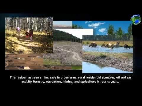 Natural Landscapes. Alberta Tomorrow.