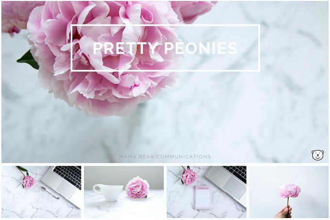 Styled Stock Photos | Pretty Peonies by mamabearcomms on @creativemarket